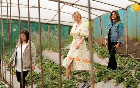 دختر ترامپ در مزرعه توت فرنگی + عکس