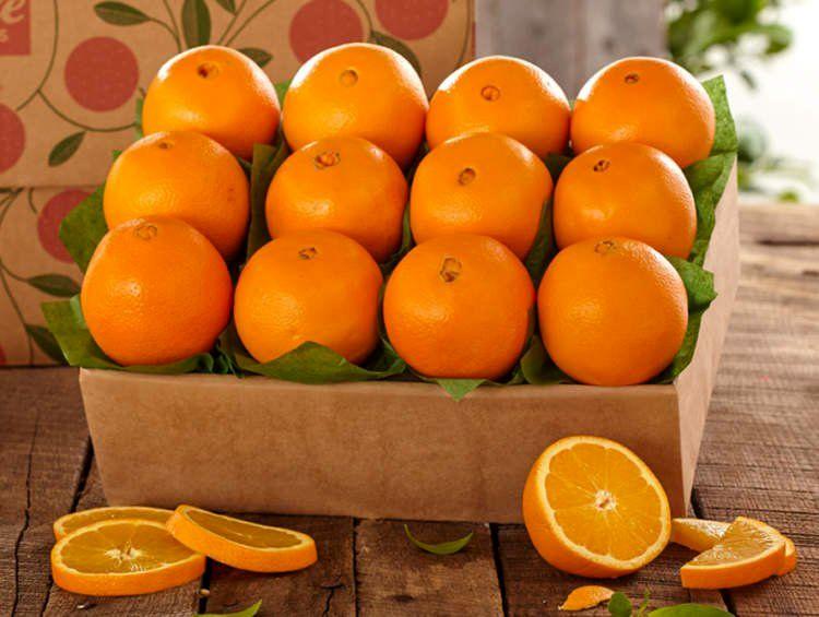 پرتقال و خواص پرتقال -
