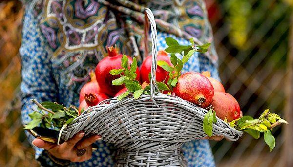 خواص بی نظیر میوه ای که 3 بار نامش در قرآن آمده