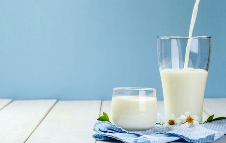 مقایسه خواص شیر شتر و شیر گاو