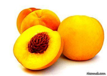 هشدار | هسته این میوه ها سمی و کشنده هستند