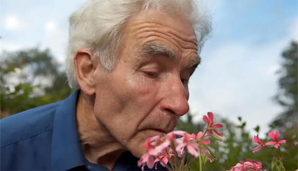 افزایش سن چه تأثیری بر حس چشایی و بویایی افراد دارد؟