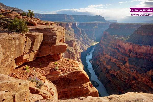 پارک ملی گرند کنیون، آریزونا، آمریکا، رودخانه کلورادو، گونههای جانوری، گیاهان