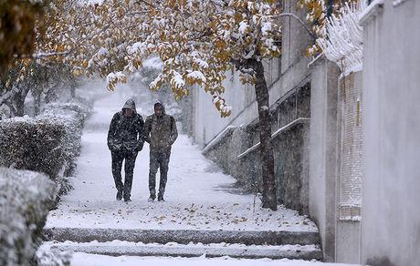 امروز و فردا در کدام شهرها برف میبارد؟