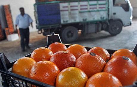 فروش پرتقالهای رنگشده در بازار