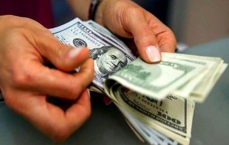 دلار ۱۰ماهه چقدر گران شد؟