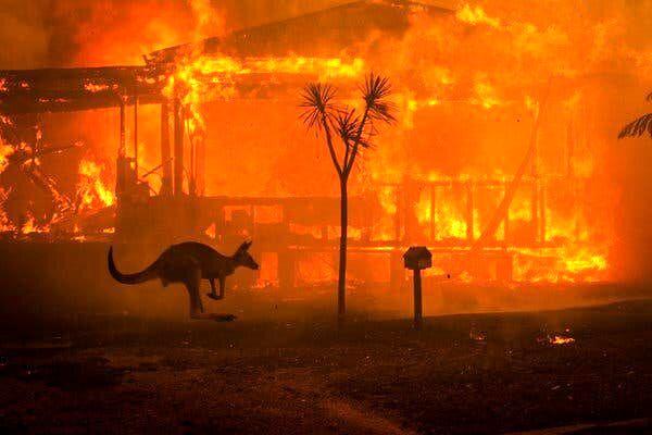 چرا استرالیا در آتش می سوزد؟