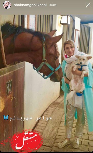 حیوانات بامزه خواهر شبنم قلی خانی + عکس