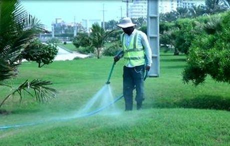مراقبت ویژه از عرصه های فضای سبزقشم با آغاز فصل گرما