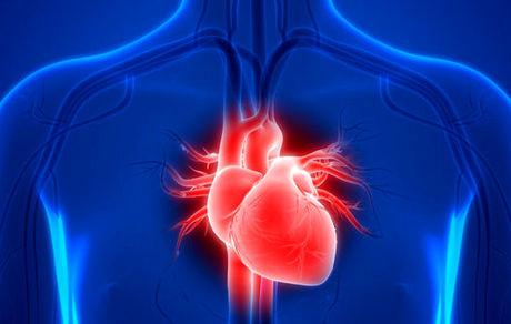 قلب انسان در فضا چه تغییری میکند؟