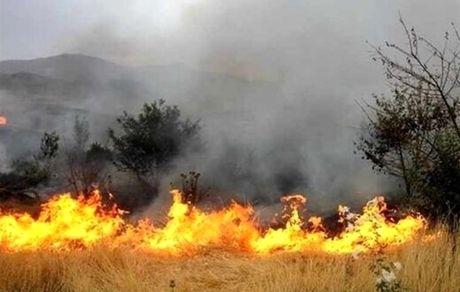 سفیدکوه لرستان در محاصره آتش